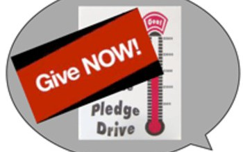 Fall Pledge Drive
